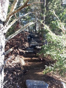 "The ""hard way"" stair from the northern overlook platform to the top path."